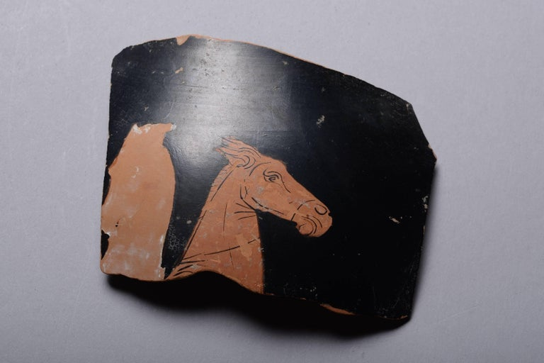 Classical Greek Ancient Greek Red Figure Vase Horse Head Fragment, 350 BC For Sale