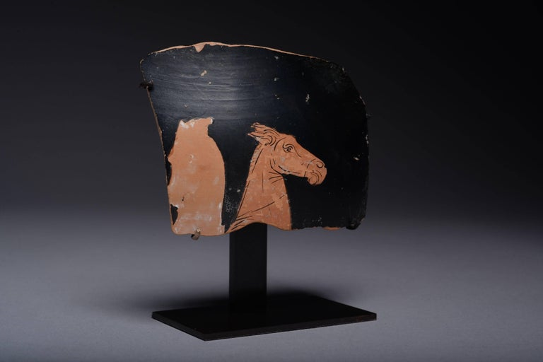 18th Century and Earlier Ancient Greek Red Figure Vase Horse Head Fragment, 350 BC For Sale