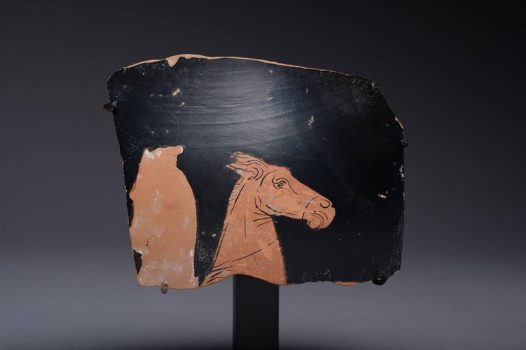 Pottery Ancient Greek Red Figure Vase Horse Head Fragment, 350 BC For Sale