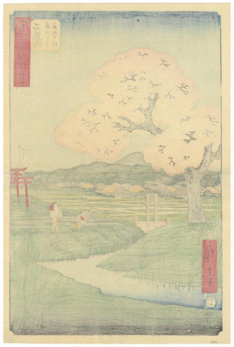 Original Japanese Woodblock Print, Ukiyo-e, Ando Hiroshige, Cherry Blossoms, Edo - Beige Landscape Print by Utagawa Hiroshige (Ando Hiroshige)