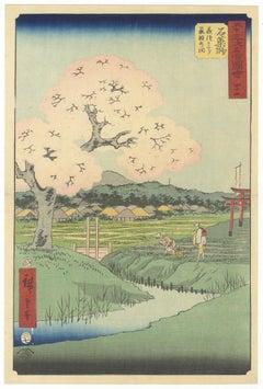 Original Japanese Woodblock Print, Ukiyo-e, Ando Hiroshige, Cherry Blossoms, Edo