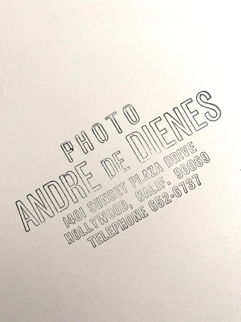 Incredibly rare photograph of a young Marilyn Monroe by Andre de Dienes. Please see reverse side for all of Andre's stamps and comments. This photo comes from the famous Kim Goodwin Collection and was purchased directly from his Estate.