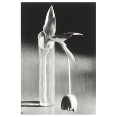 Andre Kertesz 'Melancholic Tulip', 1929