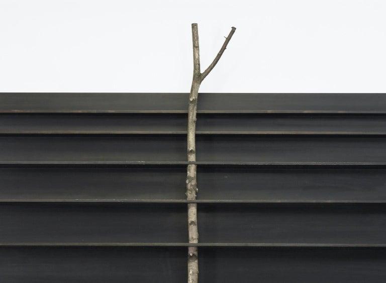 Andrea Branzi [Italian, b. 1938] Tree 5, 2010 Birch and patinated aluminum  118.11 x 78.74 x 10.63 inches 300 x 200 x 27 cm  Tree 5 cabinet or bookshelf by the Italian architect and designer Andrea Branzi.  Andrea Branzi was born in Florence in 1938