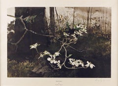 """Dogwood,"" Andrew Wyeth, Flowers in the Forest Woods"