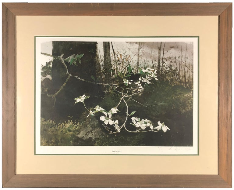 Dogwood - Print by Andrew Wyeth