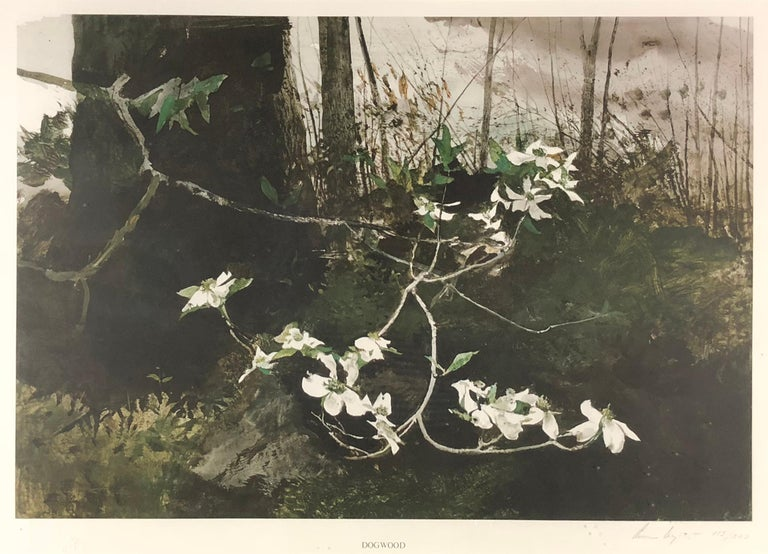 Andrew Wyeth Landscape Print - Dogwood