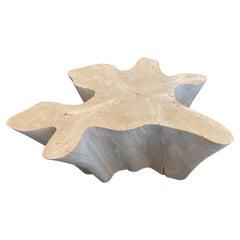 Andrianna Shamaris Amorphous Bleached Modular Teak Wood Coffee Table