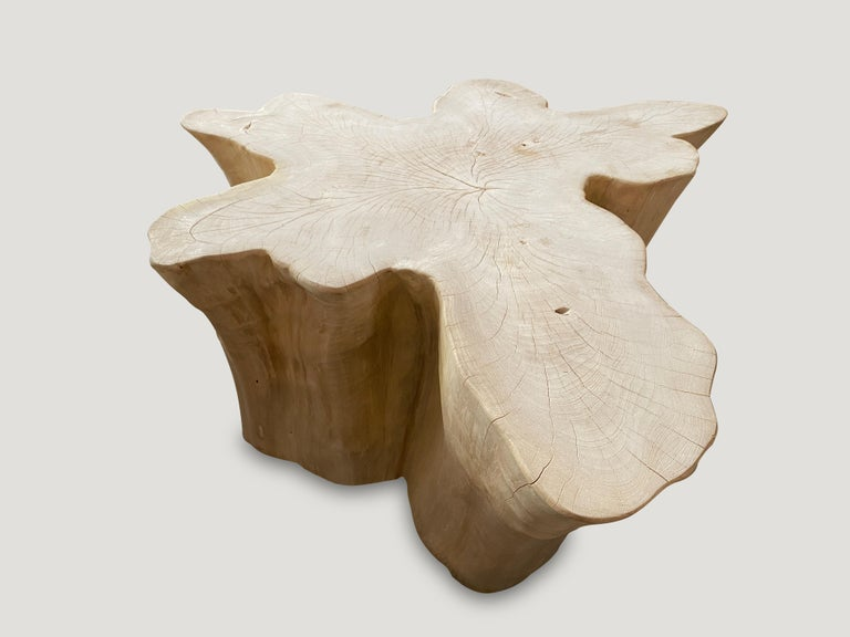 Andrianna Shamaris Amorphous Bleached Teak Wood Coffee Table In Excellent Condition For Sale In New York, NY