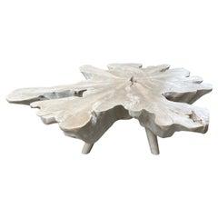 Andrianna Shamaris Amorphous Bleached Teak Wood Mid Century Style Coffee Table
