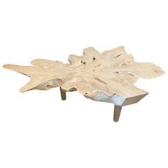 Andrianna Shamaris Amorphous Bleached Teak Wood Midcentury Style Coffee Table