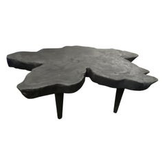Andrianna Shamaris Amorphous Charred Mango Wood Coffee Table