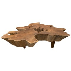 Andrianna Shamaris Amorphous Midcentury Style Teak Wood Coffee Table