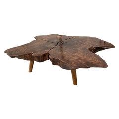 Andrianna Shamaris Amorphous Rosewood Coffee Table