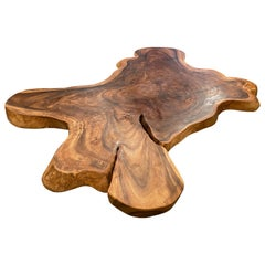Andrianna Shamaris Amorphous Suar Wood Coffee Table
