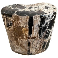 Andrianna Shamaris Beautiful Checkered Petrified Wood Side Table
