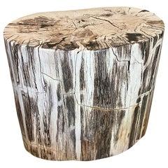 Andrianna Shamaris Beautiful Grey Black and White Petrified Wood Side Table