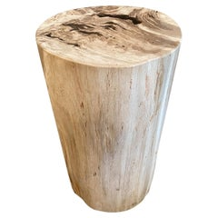 Andrianna Shamaris Beautiful Neutral Toned Petrified Wood Side Table with Resin
