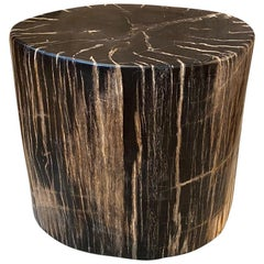 Andrianna Shamaris Beautiful Petrified Wood Side Table
