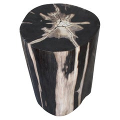 Andrianna Shamaris Beige and Black Super High Quality Petrified Wood Side Table