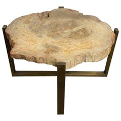 Andrianna Shamaris Beige Petrified Wood Slab Side Table or Coffee Table