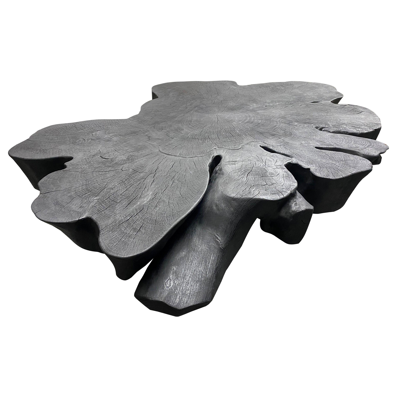Andrianna Shamaris Biomorphic Sculptural Charred Mango Wood Coffee Table