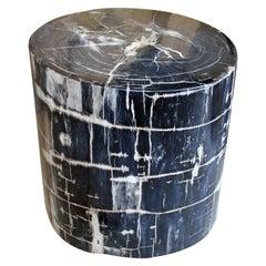 Andrianna Shamaris Black and Grey High Quality Petrified Wood Side Table