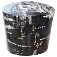 Andrianna Shamaris Black and White High Quality Petrified Wood Side Table