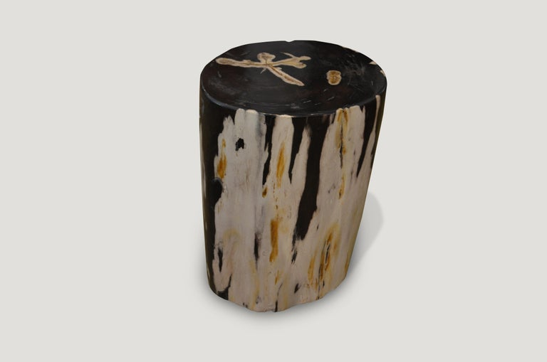 Stunning black and white petrified wood side table. We have a pair available cut from the same log. The price reflects one.  We source the highest quality petrified wood available. Each piece is hand selected and highly polished with minimal