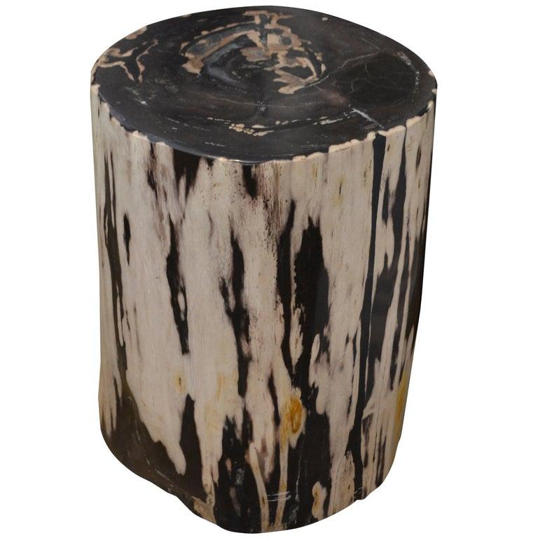 Andrianna Shamaris Black And White Petrified Wood Side Table At 1stdibs