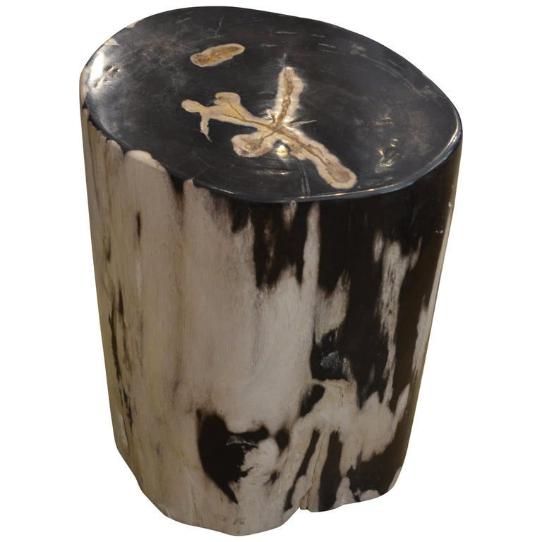 Andrianna Shamaris Black and White Petrified Wood Side Table For Sale
