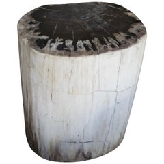 Andrianna Shamaris Black and White Petrified Wood Side Table