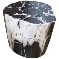 Andrianna Shamaris Black and White Petrified Wood Side Table