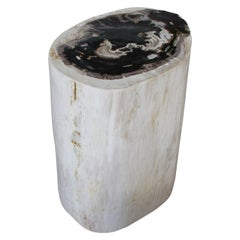Andrianna Shamaris Black and White Petrified Wood Side Table or Pedestal