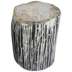 Andrianna Shamaris Black and White Stripe Petrified Wood Side Table