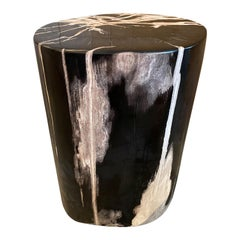 Andrianna Shamaris Black and White Super Smooth Petrified Wood Side Table