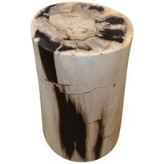 Andrianna Shamaris Black and White Toned Petrified Wood Side Table or Stool