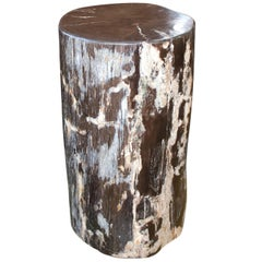 Andrianna Shamaris Black Green and White Petrified Wood Side Table