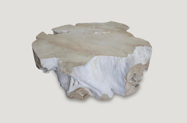 Organic Modern Andrianna Shamaris Bleached Teak Wood Coffee Table For Sale