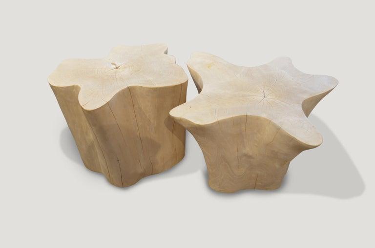 Organic Modern Andrianna Shamaris Bleached Teak Wood Organic Side Table For Sale