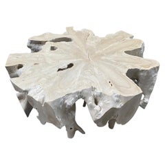 Andrianna Shamaris Bleached Teak Wood Round Organic Coffee Table
