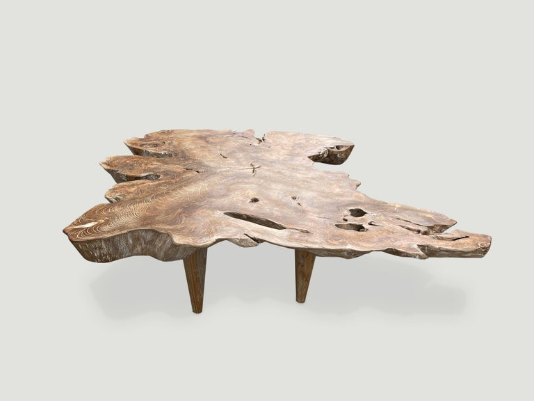 Andrianna Shamaris Butterfly Shape Teak Wood Coffee Table ...
