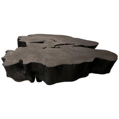 Andrianna Shamaris Charred Amorphous Reclaimed Mango Wood Coffee Table