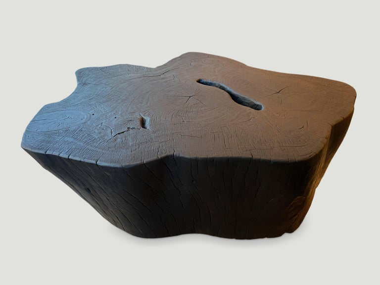 Impressive single mango root coffee table floating on a small platform. A slight graduation from the bottom to the top.  The Triple Burnt collection represents a unique line of modern furniture made from solid organic wood. Burnt three times to