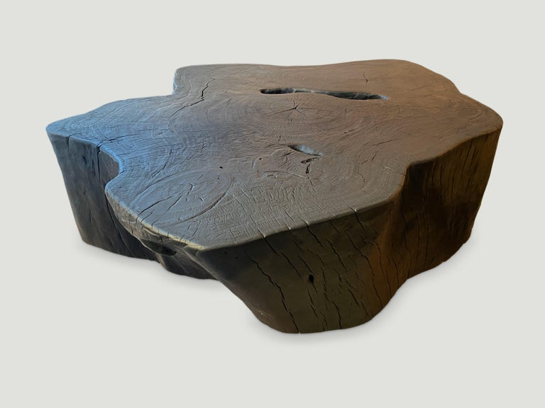 Andrianna Shamaris Charred Coffee Table In Excellent Condition For Sale In New York, NY