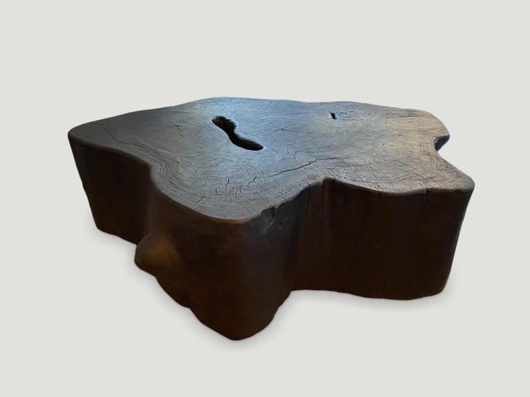 Wood Andrianna Shamaris Charred Coffee Table For Sale