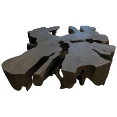 Andrianna Shamaris Charred Mahogany Root Coffee Table