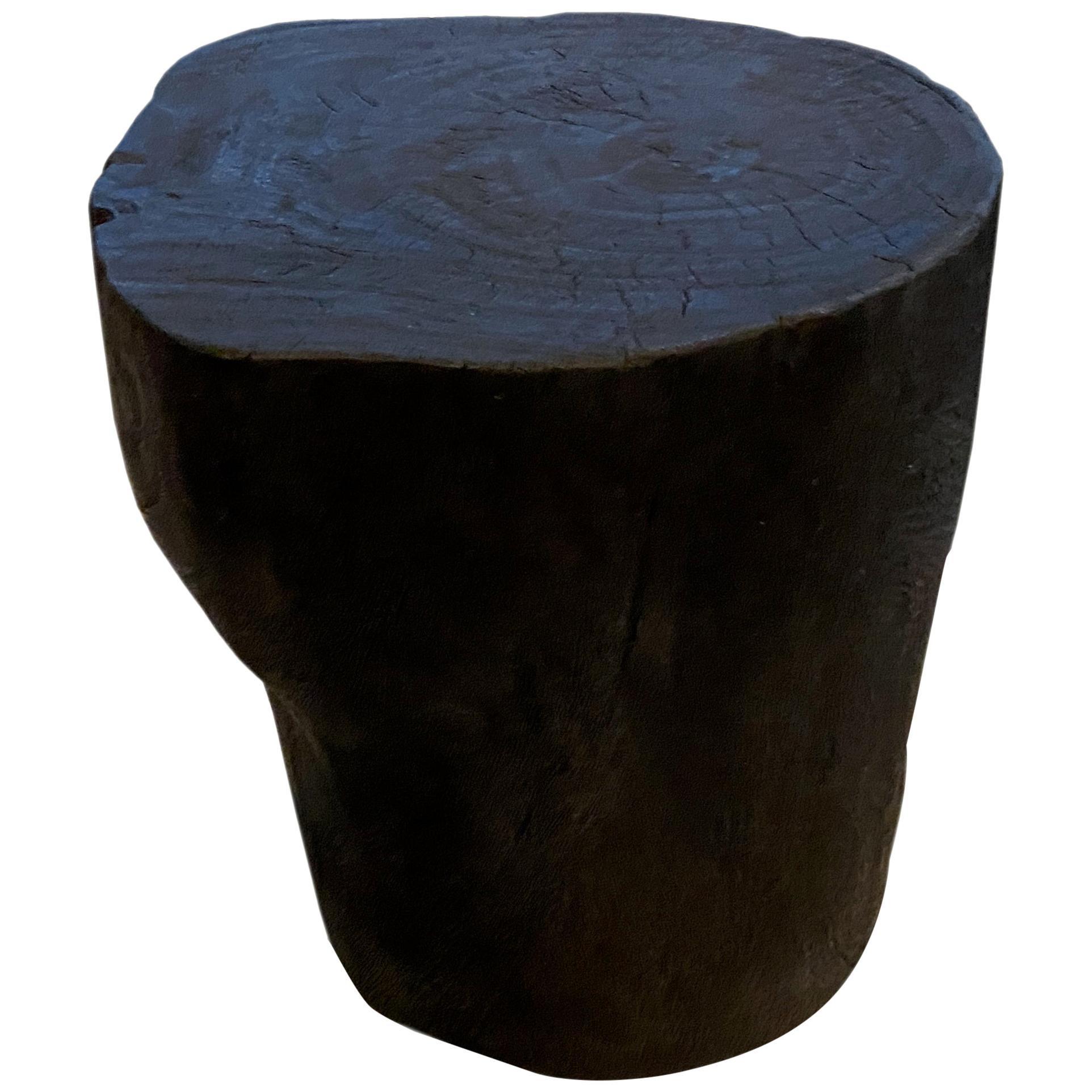 Andrianna Shamaris Charred Suar Wood Sculptural Side Table