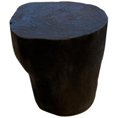 Andrianna Shamaris Charred Suar Wood Sculptural Side Table