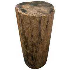 Andrianna Shamaris Classic Beige Toned High Quality Petrified Wood Side Table